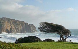Ancora maestrale sulla Sardegna, weekend all'insegna del forte vento. A Seui, in Ogliastra, record di raffiche