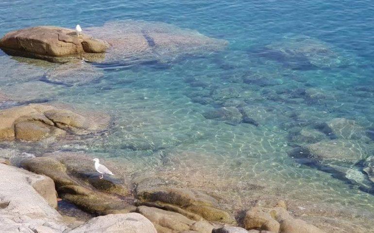 Le foto dei lettori. Acqua azzurra, acqua chiara, acqua ogliastrina