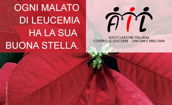 7-8-9 dicembre, le Stelle di Natale AIL compiono trent'anni. Volontari anche a Baunei e Santa Maria