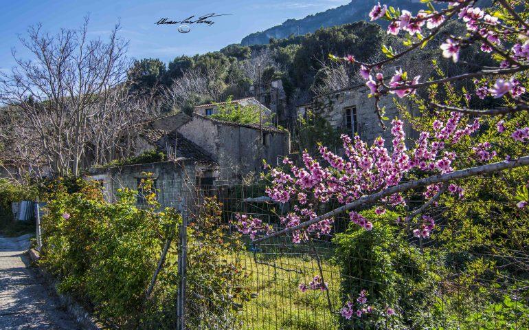 Le foto dei lettori. Finalmente la primavera in Ogliastra!