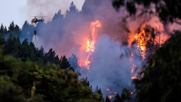 Inferno di fuoco a Gran Canaria: 1700 ettari di vegetazione distrutti e 4mila persone evacuate