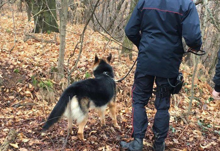 Arrestato l'assassino di Asuntino Mirai, l'emigrato sardo ucciso ieri a Torino