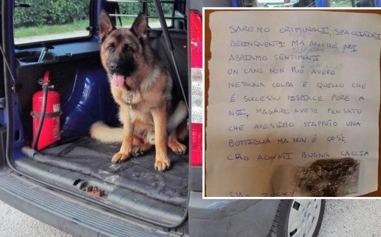 """Vicenza, cordoglio degli spacciatori per la morte del cane antidroga Rocky: """"Anche noi abbiamo dei sentimenti"""""""