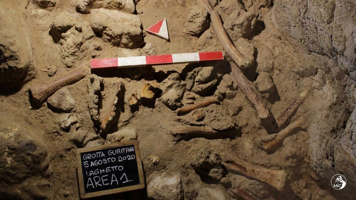 neanderthal-circeo-scoperta (2)