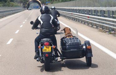 In vacanza con il cane Ogliastra
