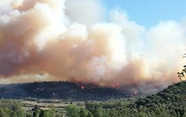 Incendio in Ogliastra